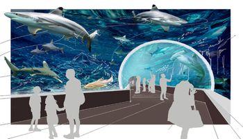 Investment in Mazatlan Aquarium.