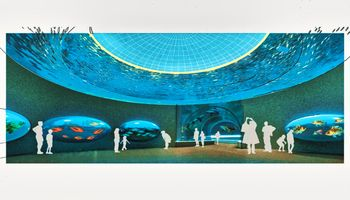 45 million dollars will be invested in the Greater Aquarium of Latin America