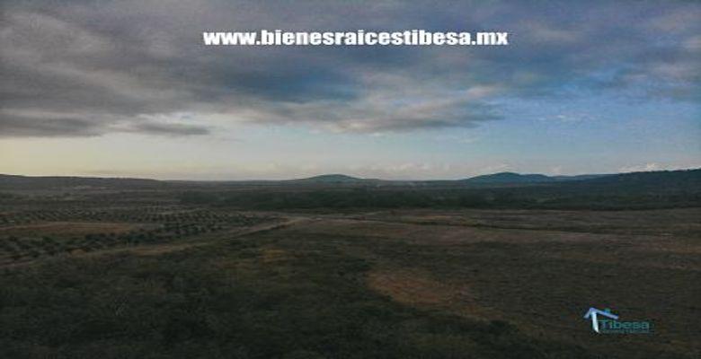 Terrenos Agricola 24 Hectareas