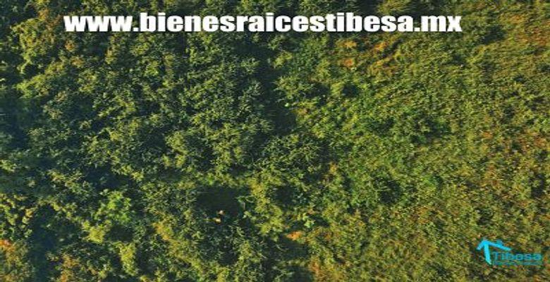 Terrenos Habitacionales Mazatlan Cerca Estadio Futbol